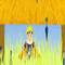 Naruto  (Oynama:842)