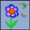 Kolibri  (Oynama:961)